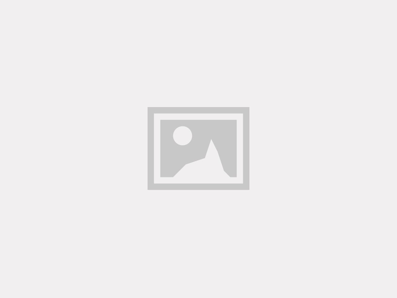 Limex, katthalsband, 10mm/22-35cm